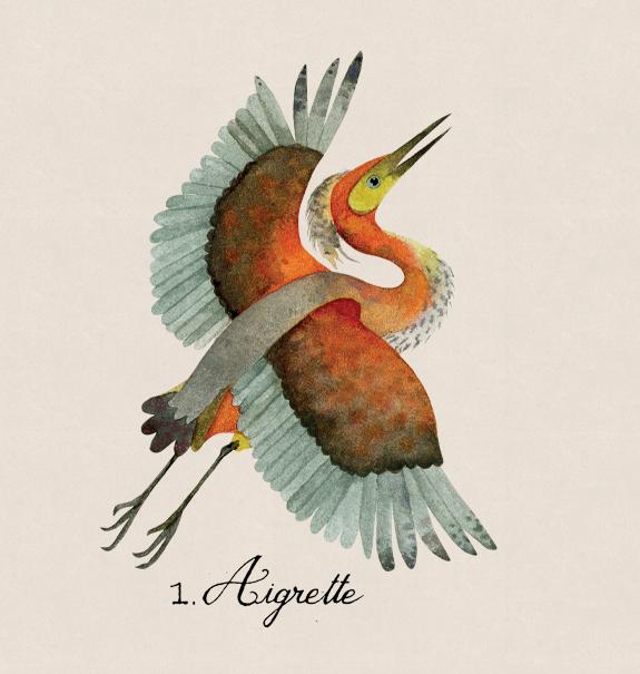 aigrette2